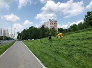 photo_2020-06-10_17-00-05
